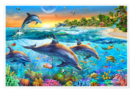Premium poster  Dolphin bay - Adrian Chesterman