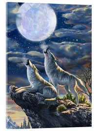 Acrylic print  Midnight Wolves - Adrian Chesterman