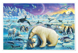 Premium poster  Arctic Night - Adrian Chesterman