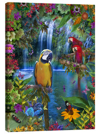 Canvas print  Bird Tropical Land - Alixandra Mullins
