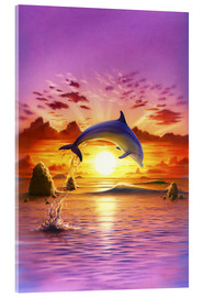 Acrylic print  Day of the dolphin - sunset - Robin Koni
