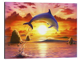 Aluminium print  Day of the dolphin - sunset - Robin Koni