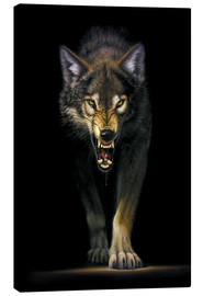 Canvas print  Stalking wolf - Chris Hiett