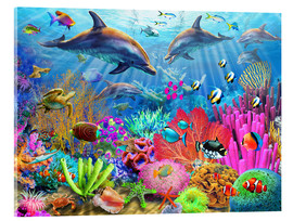 Acrylic print  Dolphin coral reef - Adrian Chesterman