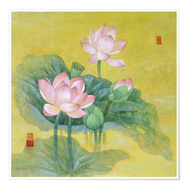 Premium poster  Dream lotus - Ailian Price