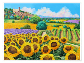 Premium poster  Vineyards and sunflowers in Provence - Jean-Marc Janiaczyk