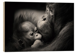 Wood print  Mothers love - Manuela Kulpa