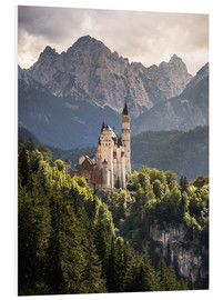 Foam board print  Neuschwanstein Castle in front of the Alps - Andreas Wonisch