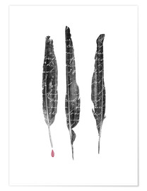 Premium poster  The author's feathers - Sybille Sterk