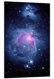 Aluminium print  Orion Nebula M 42 and Running Man Nebula - MonarchC