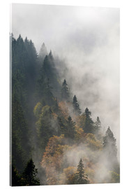 Acrylic print  Cloud forest - Michael Valjak