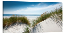 Canvas print  Dune with fine shining marram grass - Reiner Würz