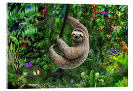 Acrylic print  Sloth in the jungle - Adrian Chesterman