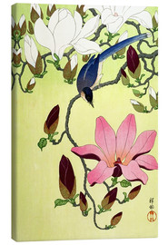 Canvas print  Magpie with Pink and White Magnolia Blossoms - Ohara Koson