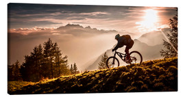 Canvas print  Golden Hour Biking - Sandi Bertoncelj