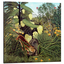 Aluminium print  Combat of tiger and buffalo - Henri Rousseau