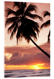 Acrylic print  Tropical sunset in Barbados, Caribbean - Angelo Cavalli