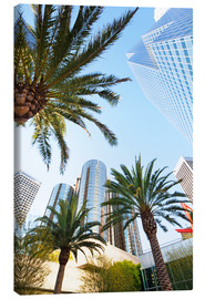 Canvas print  Palm trees in Los Angeles - Gavin Hellier