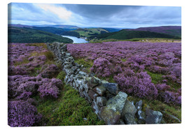 Canvas print  Heather covered Bamford Moor and dry stone wall - Eleanor Scriven