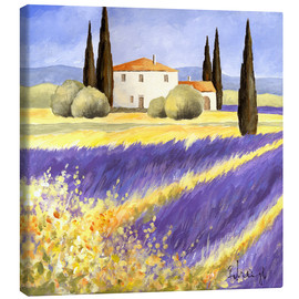 Canvas print  Light of Provence - Franz Heigl