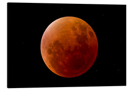 Aluminium print  Blood Moon September 2015 - MonarchC