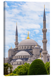 Canvas print  Blue Mosque Istanbul - Jan Schuler
