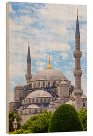Wood print  Blue Mosque Istanbul - Jan Schuler