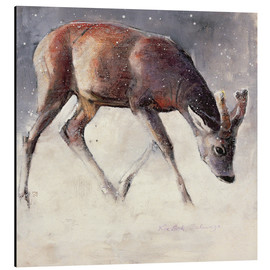 Aluminium print  Young deer in winter - Mark Adlington