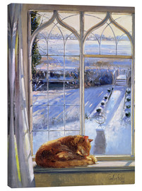 Canvas print  Cat in the Window - Timothy Easton