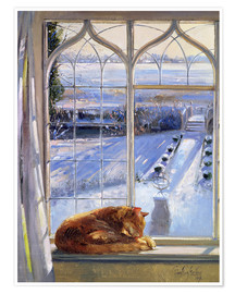 Premium poster  Cat in the Window - Timothy Easton