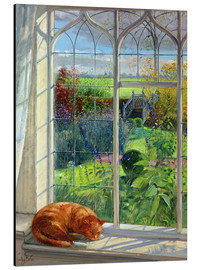 Aluminium print  Cat in the window in summer - Timothy Easton