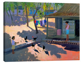 Canvas print  Hens and Chickens, Cuba, 1997 - Andrew Macara