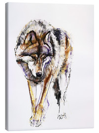 Canvas print  European Wolf - Mark Adlington