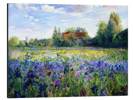 Aluminium print  Field of Flowers in the Sunset - Timothy Easton