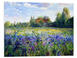 Foam board print  Field of Flowers in the Sunset - Timothy Easton