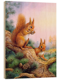 Wood print  Pair of Red Squirrels on a Scottish Pine - Carl Donner