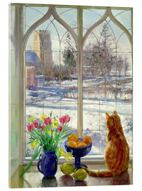 Acrylic print  Snow Shadows and Cat - Timothy Easton