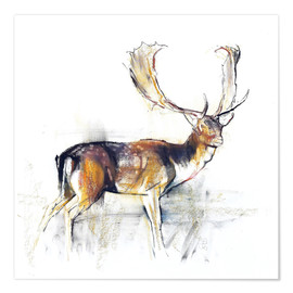 Premium poster Study of a Stag