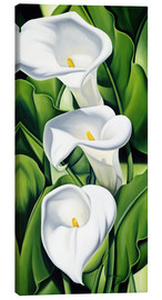 Canvas print  Lily - Catherine Abel