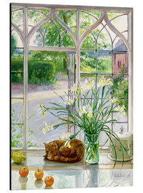 Aluminium print  Sleeping Cat in the Window - Timothy Easton