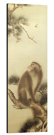 Aluminium print  Monkey watching a dragonfly - Japanese School