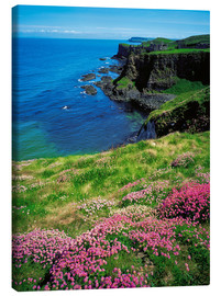 Canvas print  Dunluce Castle, Ireland - The Irish Image Collection