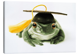 Canvas print  Frog with completion hood - Darwin Wiggett