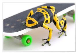 Premium poster  Frog On A Skateboard - Corey Hochachka
