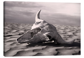 Canvas print  Skull in the desert - Carson Ganci