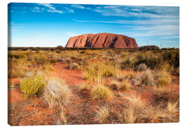 Canvas print  Ayers Rock in the evening - Matteo Colombo
