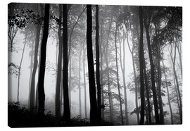 Canvas print  Foggy Woods - The Irish Image Collection