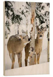 Wood print  Deers in a winter forest - Michael Interisano
