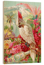 Wood print  Cocktail Cockatoo - Advertising Collection