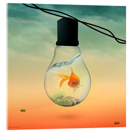 Acrylic print  lights fish B - Mark Ashkenazi